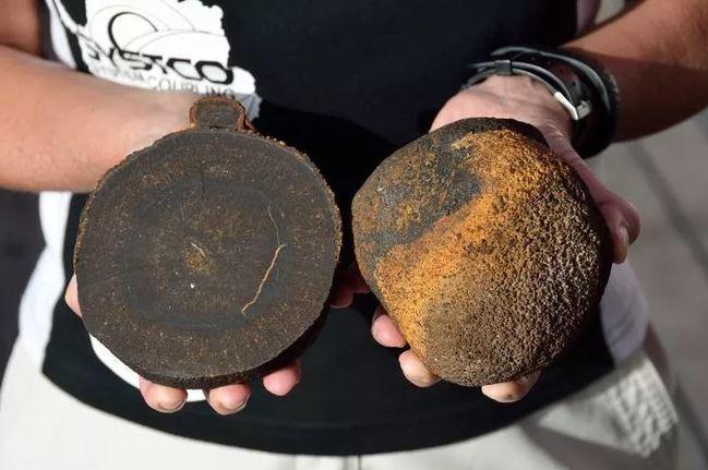 [토픽] 日 '희토류' 세계 최대 1600만톤 매장지 발견…희토류 무엇?