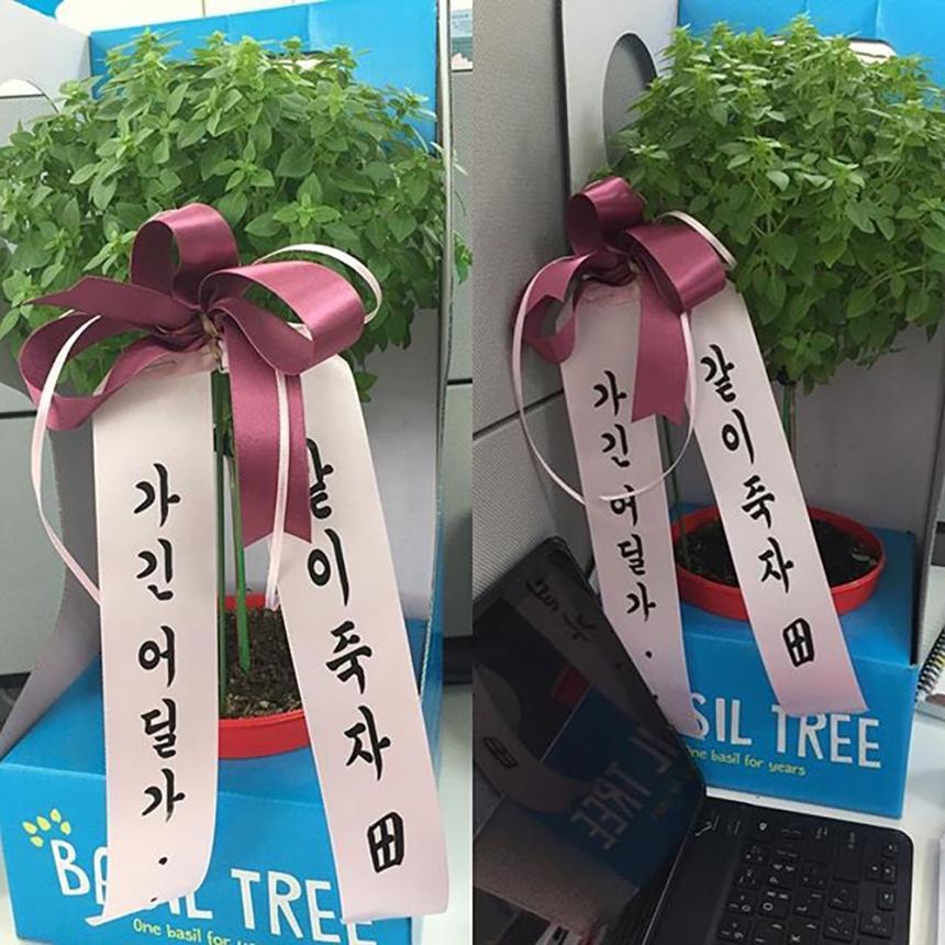 김정근 재입사 / 김정근 인스타그램