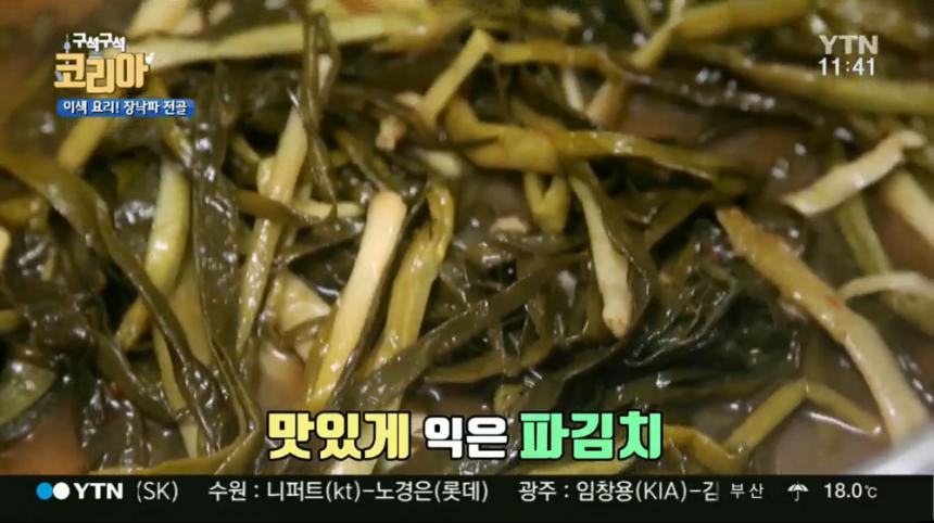YTN '구석구석 코리아' 방송 캡처