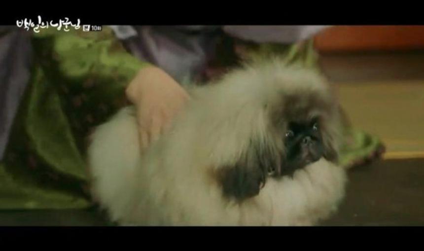 tvN '백일의 낭군님' 방송 캡처