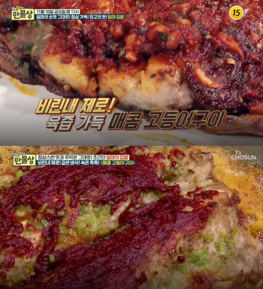 TV조선 '살림 9단의 만물상' 방송 캡처