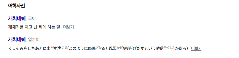 개치네쒜 의미 / 다음 어학사전