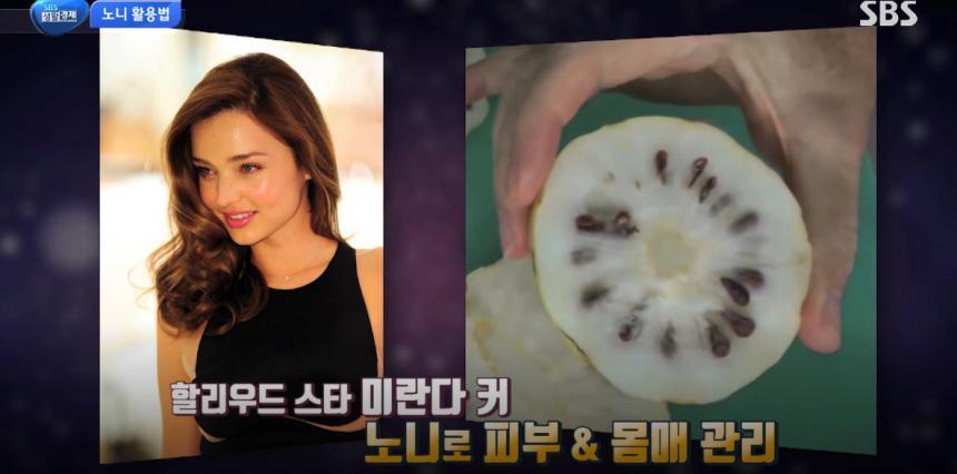'SBS 생활 경제' 방송캡처