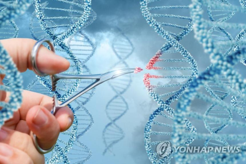 유전자교정을 표현한 이미지 / [게티이미지뱅크 제공]