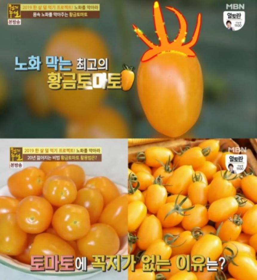 MBN '천기누설' 방송 캡처