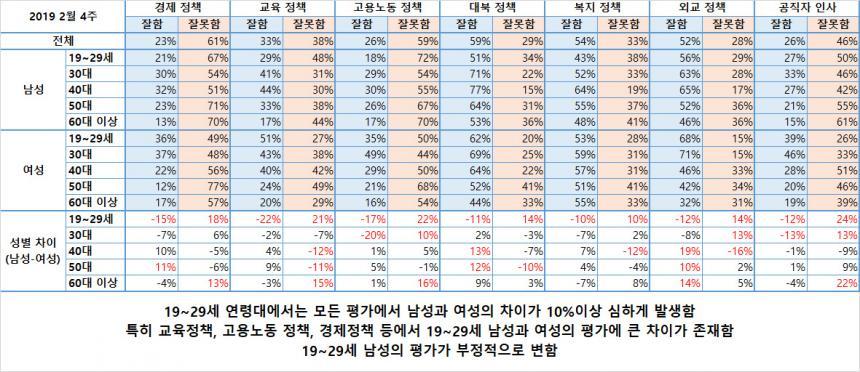 성별 연령별 정책에 대한 평가의 차이 / 한국갤럽 조사내용 재구성