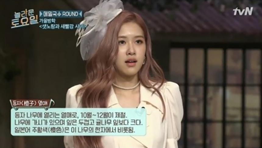 tvN 놀라운 토요일 캡처