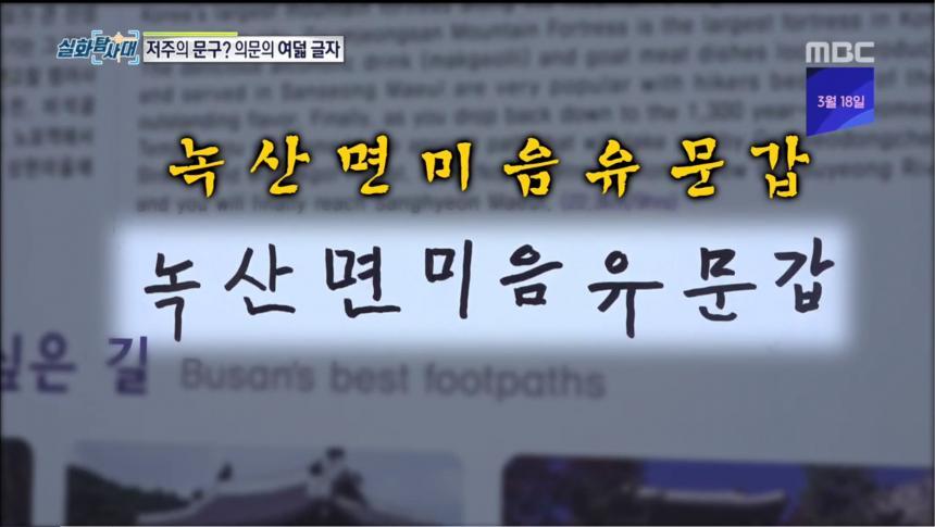 MBC '실화탐사대' 방송 캡처