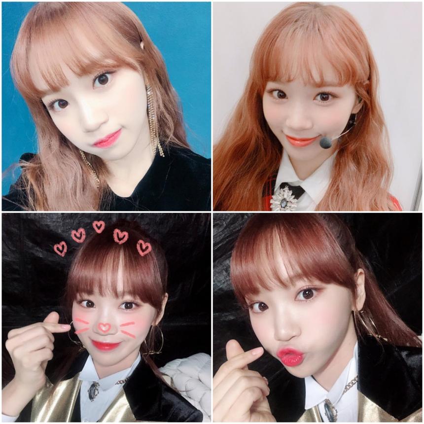 아이즈원 김채원 / 아이즈원 웨이보