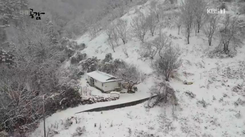 KBS1 '다큐 공감' 방송 캡처