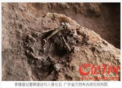 칭탕유적지에서 발굴된 사람뼈 화석 [광둥성문물고고연구소 제공.진양왕(金羊網) 캡처]