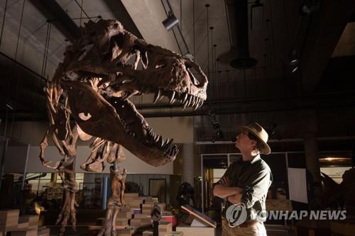 세계에서 가장 큰 티라노사우루스 화석 '스코티'1991년 캐나다 서부에서 발견된 것으로 전체 몸길이 13m, 몸무게는 8천800㎏에 달하는 것으로 추정된다. [AFP=연합뉴스]
