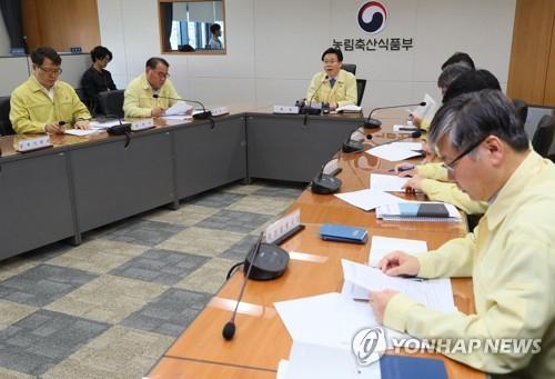 농식품부 북한 아프리카돼지열병에 긴급상황점검 회의 / 연합뉴스