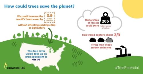 숲가꾸기를 통한 기후변화 대처 개념도. 미국 크기의 900만㎢ 숲을 추가로 조성해 약 2천50억t의 CO₂를 저장할 수 있다. [크라우더연구소 트윗 화면 캡처]
