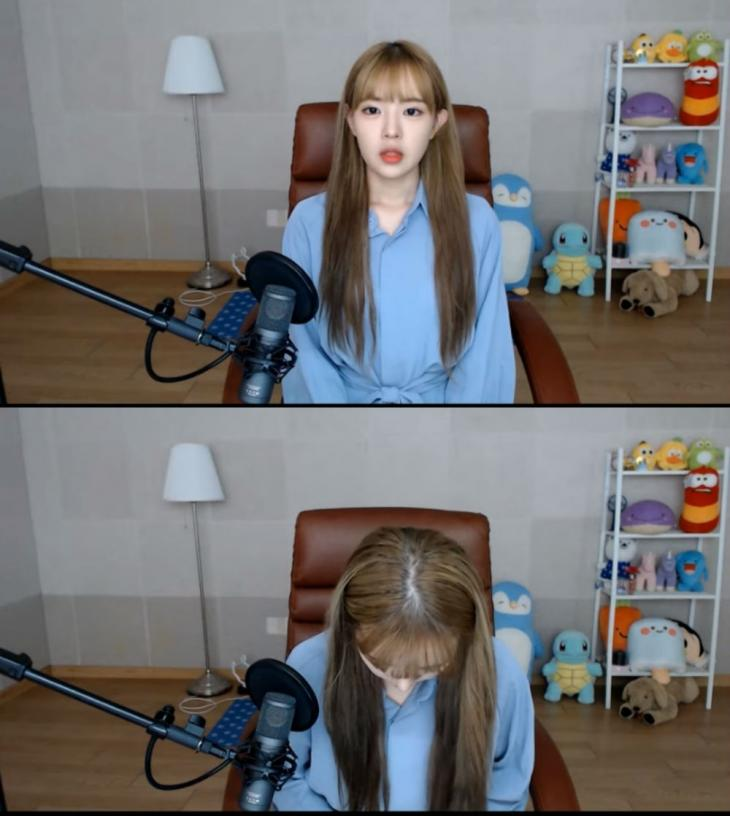 잼미님 유튜브 캡처