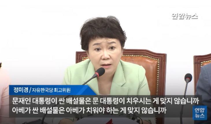 정미경 / 연합뉴스 유튜브 캡처