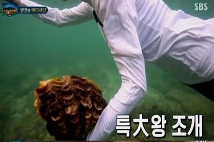 SBS '정글이 법칙' 방송 캡처