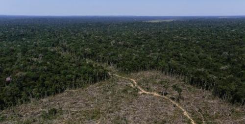 브라질 북부 아마조나스 주(州) 아푸이 지역에 속한 아마존 열대우림이 불법벌목으로 파괴된 모습 [브라질 뉴스포털 UOL]