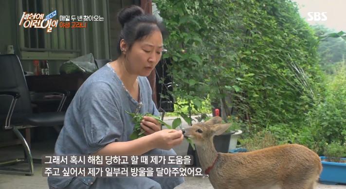 SBS '세상에 이런일이' 방송 캡처