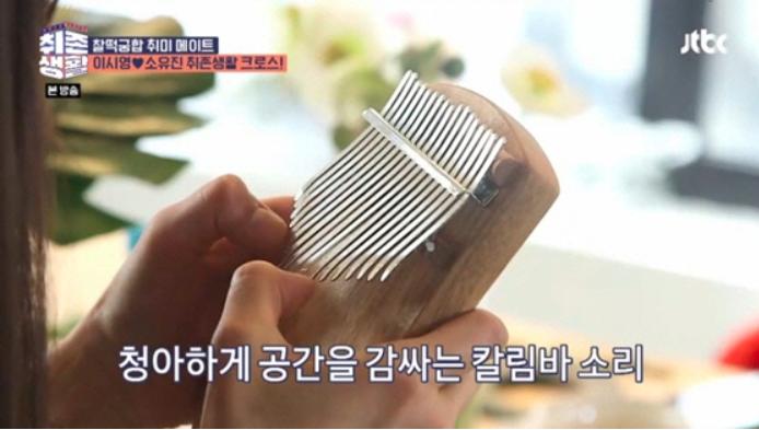 이시영 칼림바 소개 / JTBC '취존생활' 방송캡쳐
