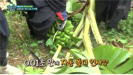 SBS 예능 '정글의법칙' 방송 캡처