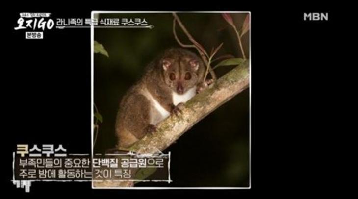 MBN '오지GO' 방송 캡처