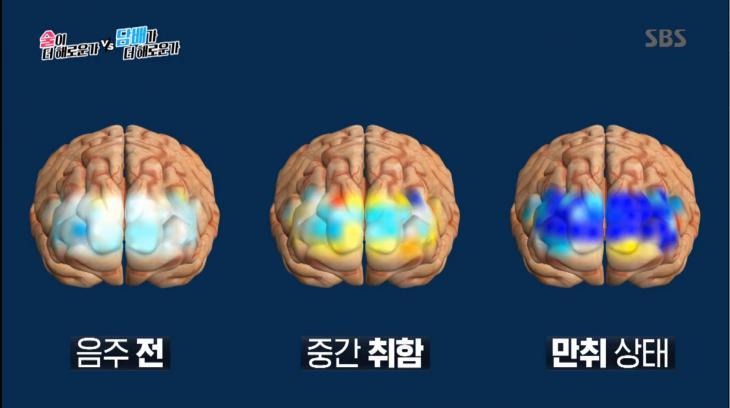 SBS '신동엽VS김상중, 술이 더 해로운가 담배가 더 해로운가' 방송 캡처