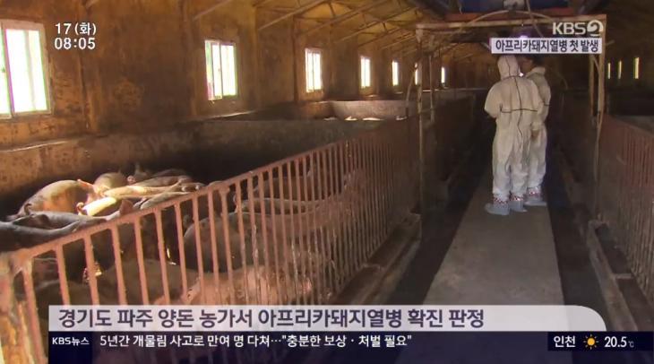 KBS2 'KBS 뉴스' 방송 캡처