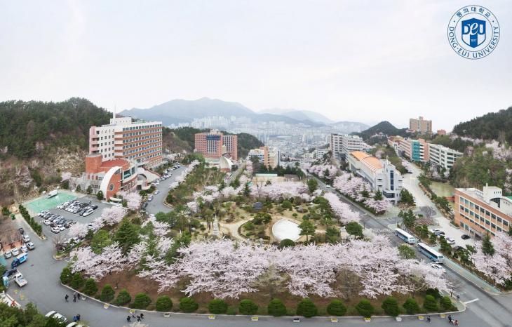 부산 동의대학교 페이스북