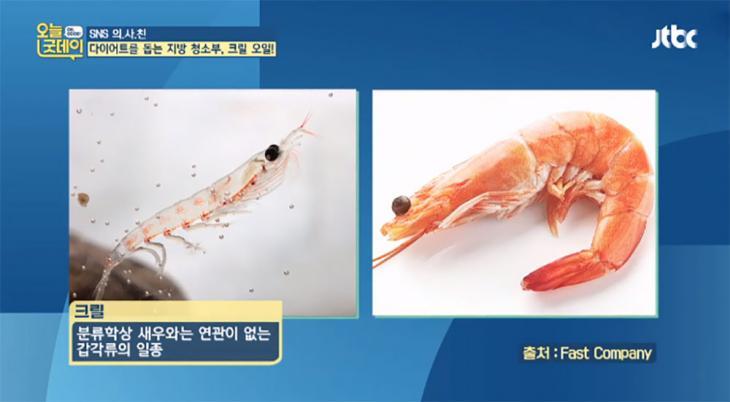 JTBC '오늘, 굿데이' 방송 캡처