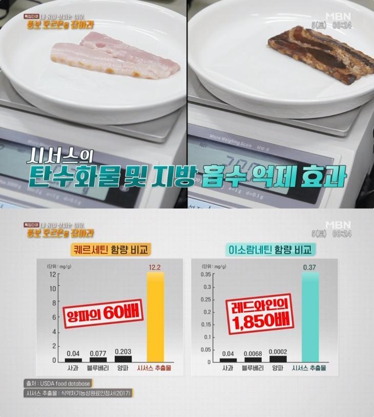 MBN 특집다큐 '내 몸이 살찌는 이유, 뚱보 호르몬을 잡아라' 방송 캡처