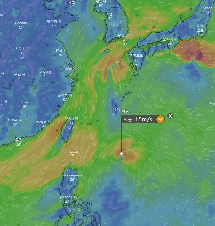 제20호 태풍 너구리 / 유럽기상청의 ECMWF, 윈디닷컴