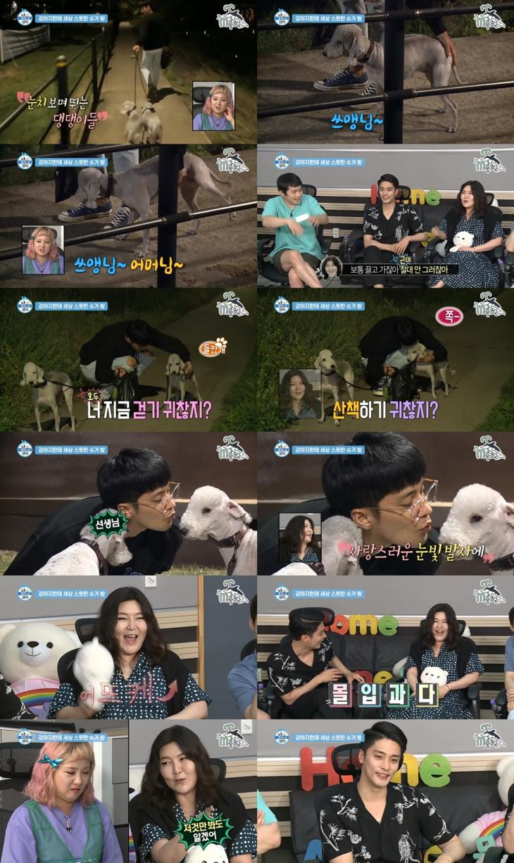 MBC '나 혼자 산다' 방송 캡처