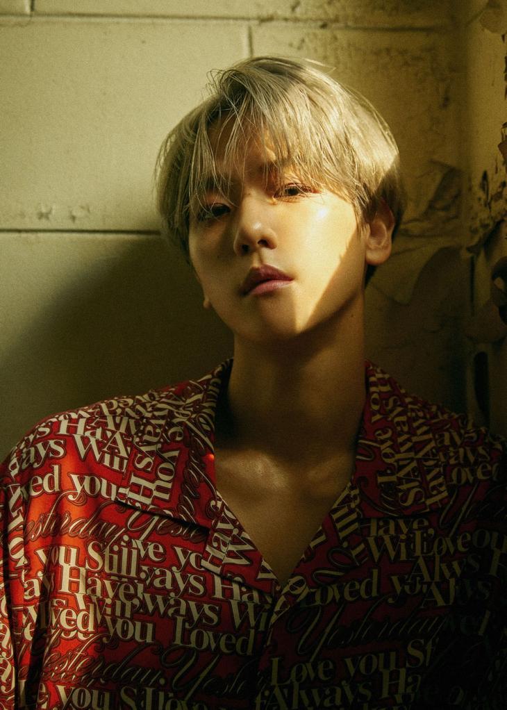 엑소(EXO) 백현 / SM엔터테인먼트