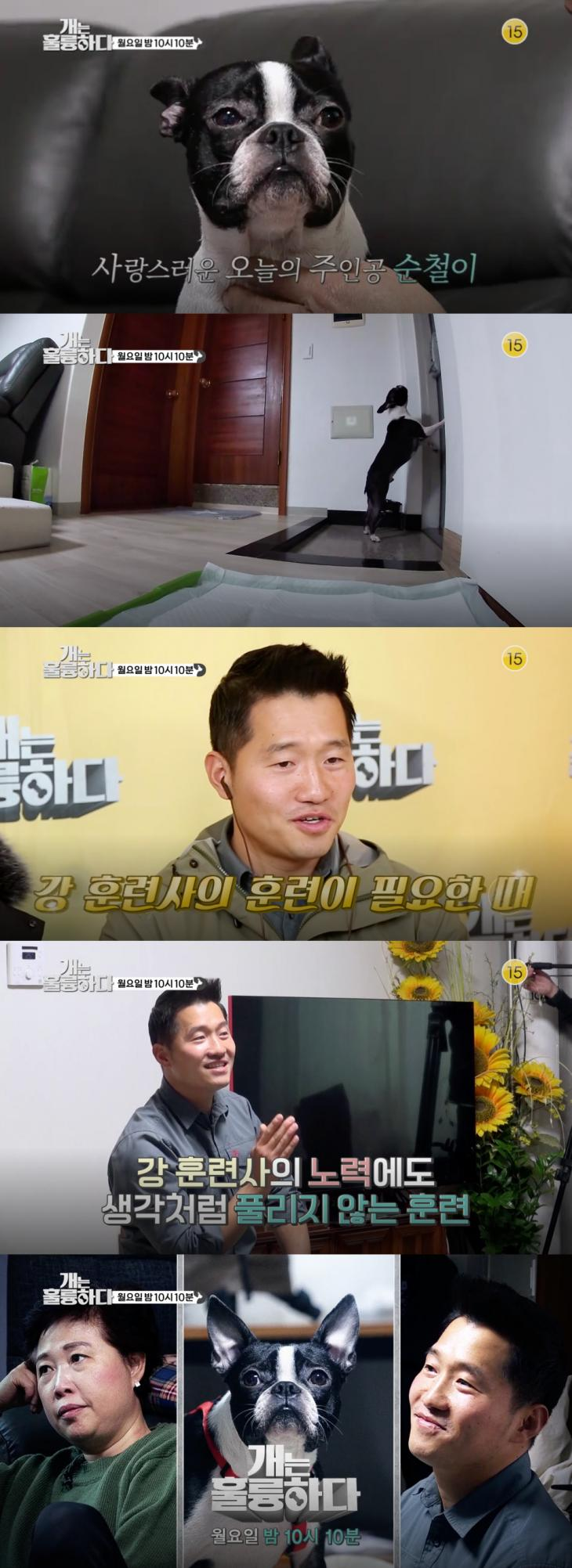 KBS2 '개는 훌륭하다' 15회 예고 캡처