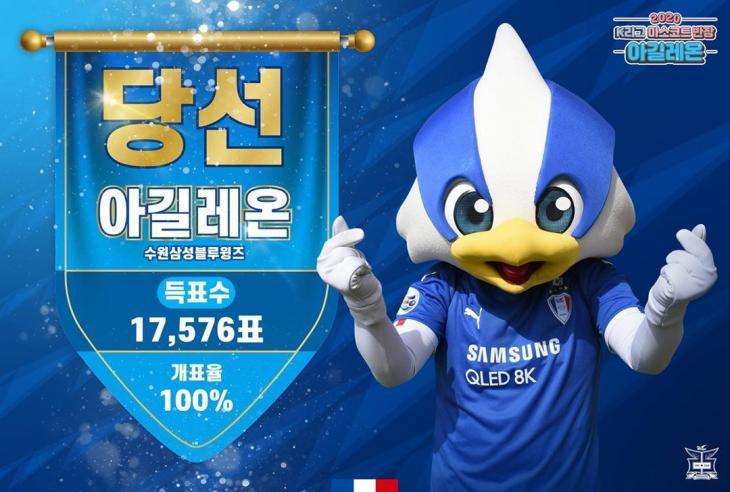 아길레온 / 수원삼성 공식 인스타그램