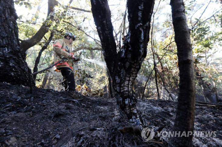 연합뉴스(과거 사진)