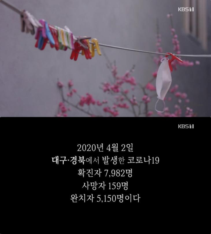 KBS1 '다큐인사이트' 방송 캡처
