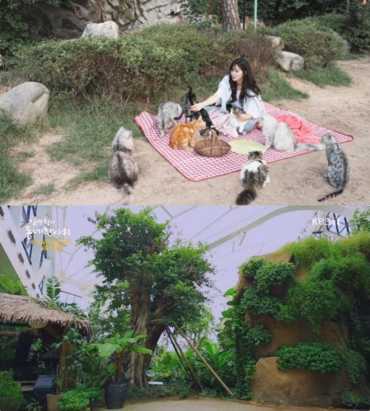 출처 : 해당 업체 네이버 플레이스 / KBS1 '김영철의 동네 한 바퀴' 방송 캡처