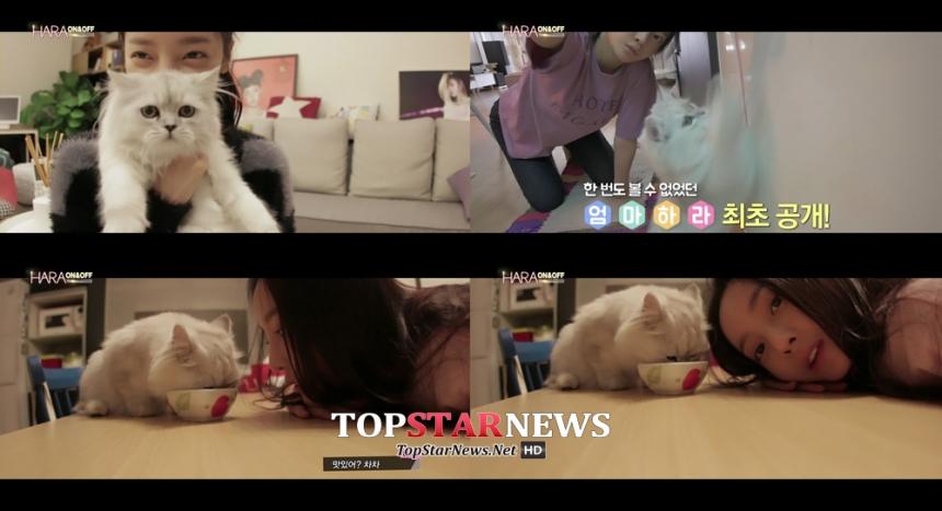 카라 구하라 / MBC