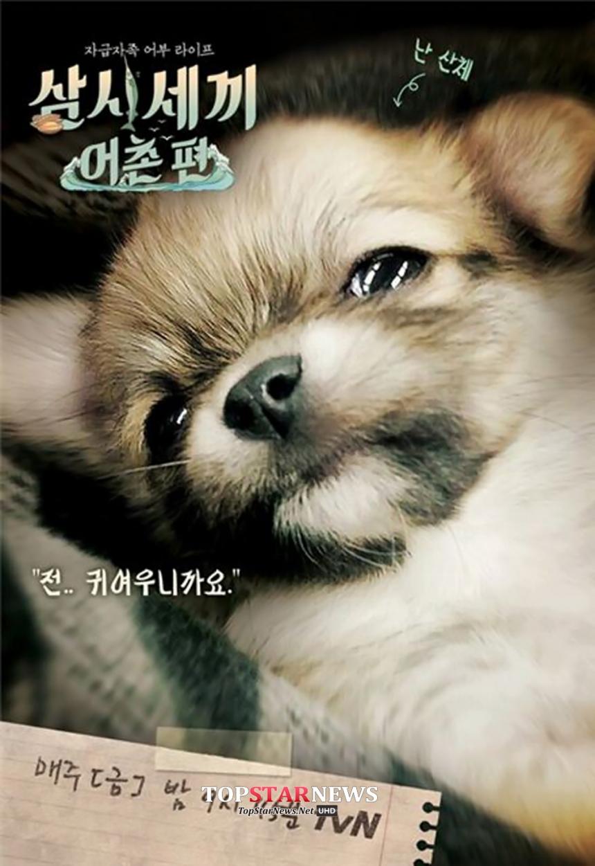 산체 / tvN '삼시세끼'