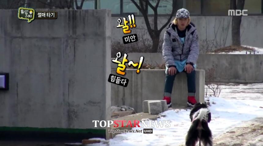 강남 / MBC 애니멀즈 방송 화면 캡처