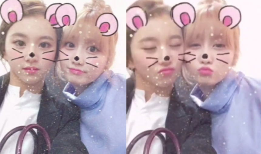 트와이스(TWICE) 채영-모모 / 트와이스(TWICE) 공식 인스타그램