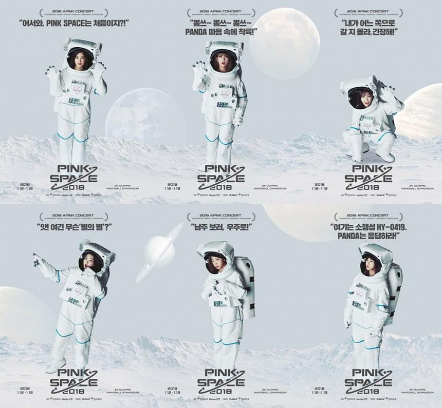 에이핑크 콘서트 '핑크 스페이스' 개인 포스터 / 플렌에이 ENT